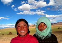 可可西里的藏羚羊和鮮花,在五道樑上只有兩眼淚汪汪