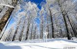 """這才是內蒙古""""真正的冬天"""",安排,今年冬季旅遊就去這裡啦!"""