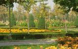 生機勃勃的直隸省植物園