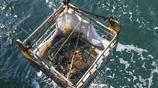 漁民撈出一個鐵塊,專家欣喜若狂,原來是和致遠艦有關