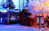 青島第一公園——青島中山公園
