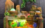 為什麼有錢人客廳要放一個魚缸?裡面有大講究,看完你就知道了