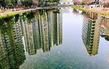 成都月牙湖,這猶如天空之境般的風景,不去看看太可惜!