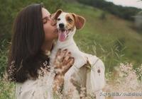 鏟屎官懂得狗狗這9種示愛方式,才能聽懂汪星人說愛你