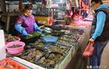 女士花80元買6個鮑魚 一家人一人一個 有的市民卻認為不如買魚吃