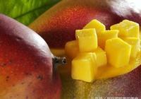 怎樣發酵芒果酒,芒果酒生產工藝流程