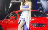 車模駕到——福特長腿氣質車模