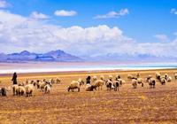 大家去西藏阿里,我們頭一次去西藏旅遊怎麼玩?