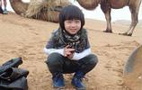 林志穎在微博上晒出kimi的照片,原來Kimi已經8歲了!