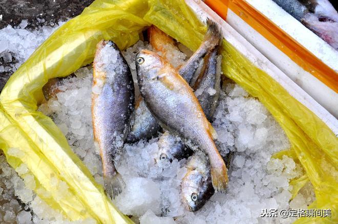 """冬季來青島買海鮮 十斤重的""""稀罕物"""" 45元一斤 顧客看多買少"""