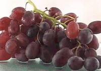 你吃葡萄乾的時候,會先清洗一下嗎?