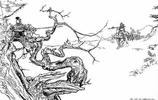 三國667:楊任與夏侯淵大戰三十回合不分勝負,逼得夏侯淵使絕招