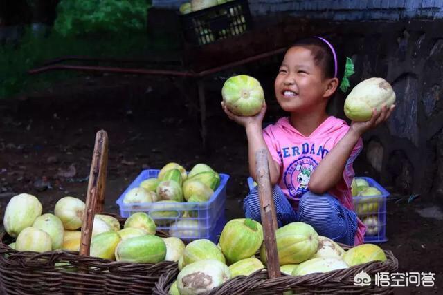 在北方,你覺得價格最便宜的,超值的,好吃的水果,有哪些?