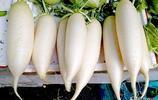 天冷了,我家的白蘿蔔這樣做,全家人都愛吃,做法還簡單,別錯過