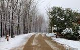 南方雪後鄉村美,大雪一夜下了好幾公分厚,北方人要來南方看雪了