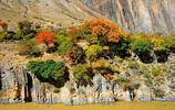 風景圖集:黃南,特色公園的聚集地
