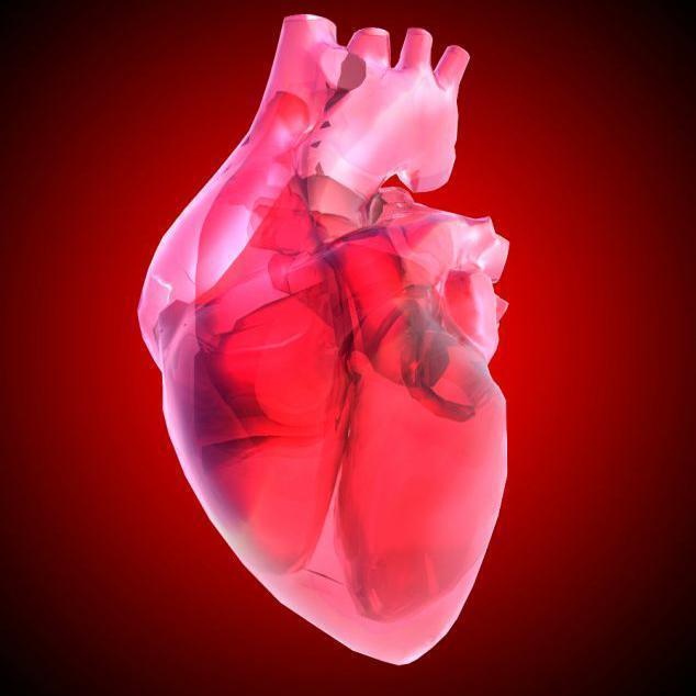 """中醫詳解心臟病——原來心臟病都是""""看""""出來的"""