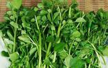 """吃藥20年,不如吃菜30天,幾種綠葉蔬菜堪稱""""救命菜"""",多吃點"""