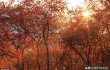 美麗中國之燕山點滴印象