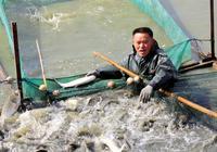 水產養殖改造低產魚塘