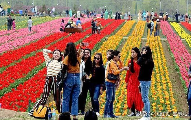 這是亞洲最大的鬱金香花園!如彩虹般炫麗,吸引遊客蜂擁而至