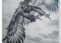 鷹姿 百態