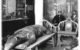 實拍瀋陽故宮裡的兩張怪獸皮,據說是努爾哈赤養的,至今身份成迷