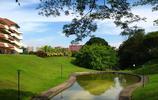圖集 跟著我一起來探討下鳥語花香的南洋理工大學