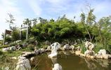 雙溪竹海漂流景區