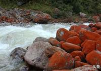 美哉!震撼!有生命的紅石頭