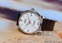 這一隻手錶 賞心而悅目