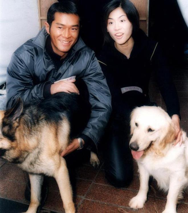 古天樂的經典TVB官配,網評:古天樂的最佳情侶