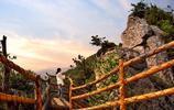 河南有座山 中國最美 中原最高 這裡才是避暑最該去的地方