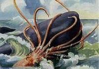 大烏賊真的能和抹香鯨抗衡嗎?