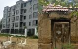 40年前靠吃樹皮充飢活命 如今菏澤村民高樓門前遛大鵝
