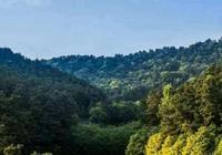 光山縣最美的景區——王母觀,風景醉人,還流傳著許多美麗傳說
