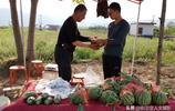 五一小長假,山西農村西瓜地頭價格是平時3倍,6元1斤你能接受嗎