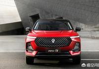 2019款寶駿RS-5,車標高顏值,車主們提車後都怎樣評價它?
