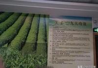 中雄股份:中國黑茶第一股