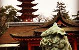 亞洲旅遊遊記 日本廣島嚴島神社旅行遊玩 每年慕名而來的遊客很多