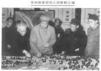 毛澤東視察都江堰